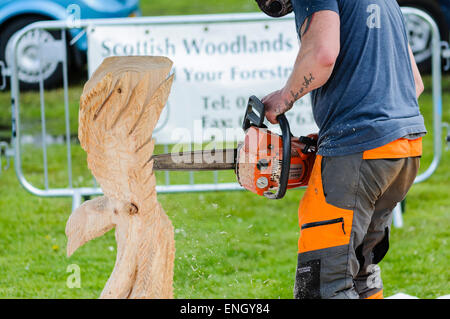 A man uses a chainsaw to carve a large eagle from a tree trunk - Stock Photo