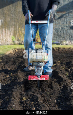 England · Gardener Rotavating A Vegetable Garden Preparing The Soil For  Planting. England   Stock Photo