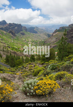 Gran Canaria, Las Cumbres - the highest areas of the island, approaches to Roque Nublo, view south towards Ayacata - Stock Photo