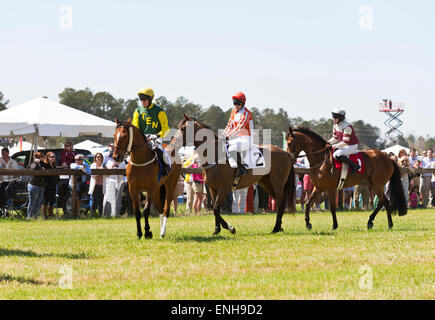 The 64th Running of the Stoneybrook Steeplechase Races, horses and jockeys warm up before race three, 'The Century - Stock Photo