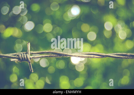 Sharp Barbed Wire Against Green Bokeh Background - Stock Photo