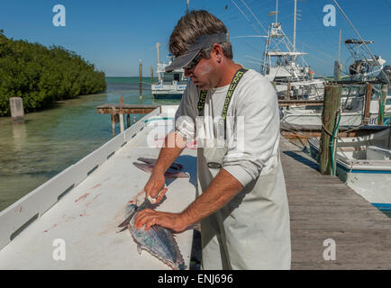 Usa florida keys catch of day fresh fish served at the hog for Florida free fishing days