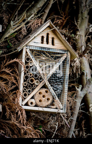 Insect house - Stock Photo