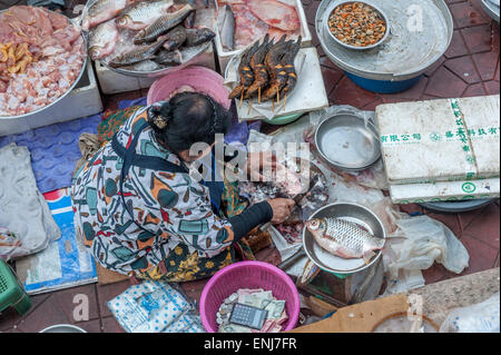 Bangkok thailand food fishmonger fish market shop stock for Fresh fish shop near me