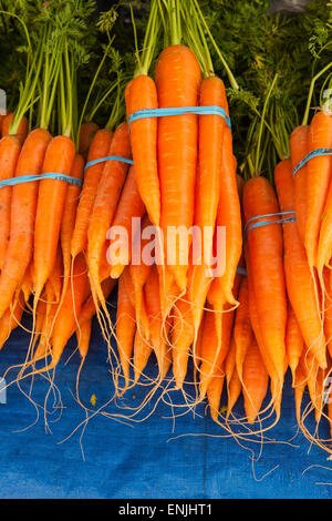 organic carrots for sale at the Farmers Market, Santa Barbara, California, United States of America - Stock Photo