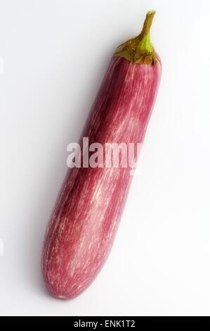 A  raw aubergine on a white studio background. - Stock Photo
