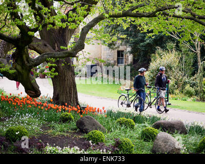 Cyclists Wheeling Bikes with Takeaway Coffees on a Path in Museum Gardens York Yorkshire England - Stock Photo