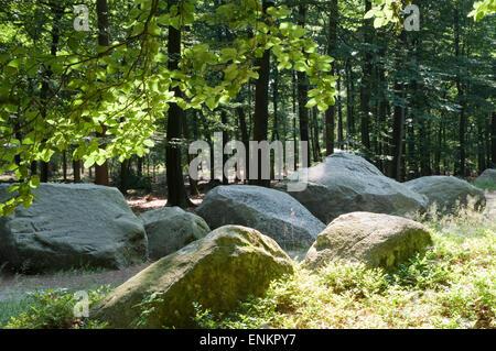 prehistorical tomb, dolmen, Oldenburger Land, Lower Saxony, Germany - Stock Photo
