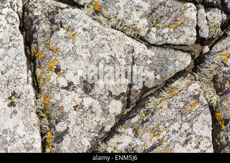 Patterns on rocks on a beach in Harris with Lichen growing on it - Stock Photo