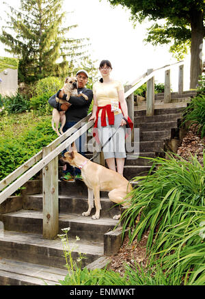 A couple in the park with there two dog's, a sharpei and a Great Dane. - Stock Photo