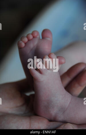 Tiny toes on a baby's feet. - Stock Photo