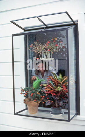 Installing a greenhouse window in a home is a popular way to nurture and display plants, as well as bring in more - Stock Photo