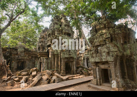 Ta Phrom, the jungle temple at Angkor Wat in Siem Reap, Cambodia