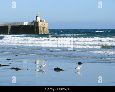 Laxey beach and lighthouse - Stock Photo