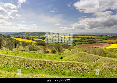 A view across the Severn Vale towards the River Severn from Painswick Beacon hill fort, Groucestershire, England, - Stock Photo