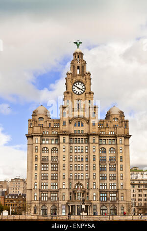 The Royal Liver Building on the Pier Head in Liverpool. - Stock Photo