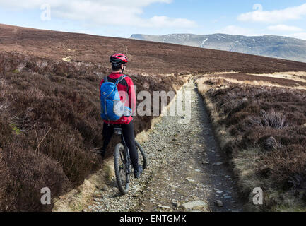 Mountain Biker Enjoying the View Along the Cumbria Way Bridleway on the Track to Skiddaw House, Lake District, Cumbria - Stock Photo