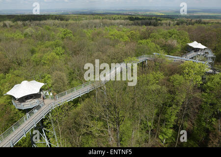 Viewing platforms on the canopy walkway (Baumkronenpfad) in Hainich National Park, Germany. - Stock Photo