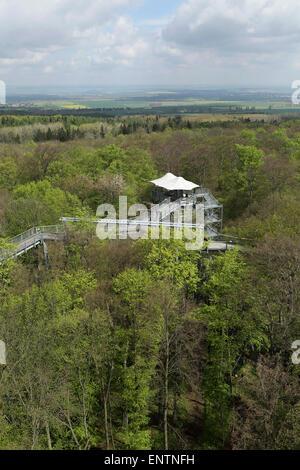 A viewing platform on the canopy walkway (Baumkronenpfad) in Hainich National Park, Germany. - Stock Photo