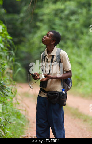 Bird Guide; Judicious use of playback of bird calls, may bring in closer wild birds of the same species. Ghana. - Stock Photo