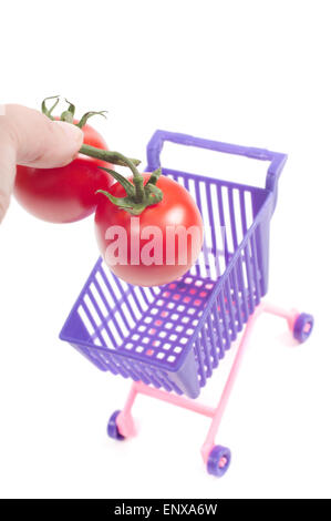 Conceptual photo with miniature shopping-cart - Stock Photo