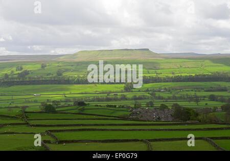 Addleborough, Wensleydale, Yorkshire Dales National Park, North Yorkshire, England UK - Stock Photo
