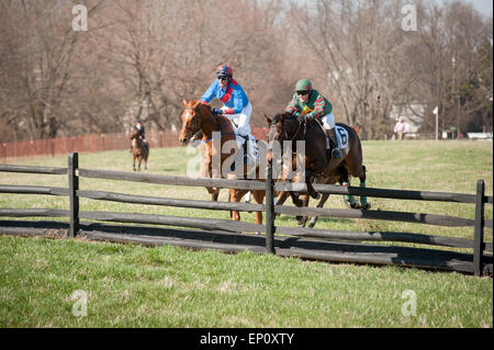Race horses with jockeys jumping over a fence at the Manor Races in Monkton, Maryland - Stock Photo