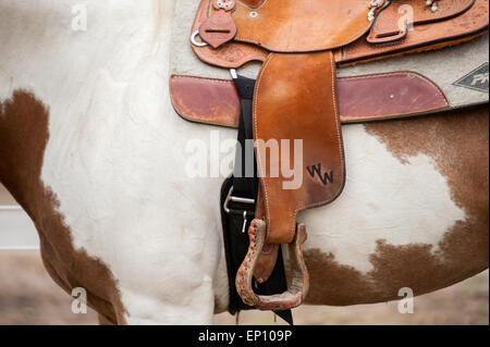 Close-up of stirrup attached to a saddle on a horse near Hurlock, Maryland, USA - Stock Photo