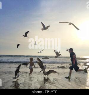 Two boys running on beach amongst seagulls - Stock Photo