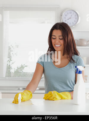 Lovely woman doing the housework - Stock Photo