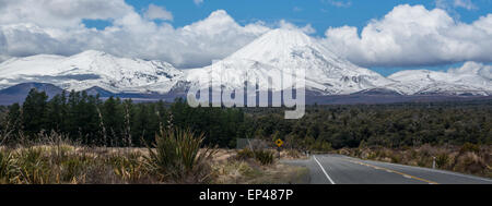 Kiwi Sign on Road to Mount Ngauruhoe, New Zealand - Stock Photo