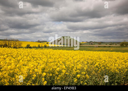Rapeseed field with Silbury Hill in the distance, near Avebury, Wiltshire, England - Stock Photo