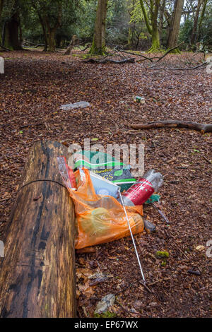 Litter left after picnic in the New Forest, Hampshire, England, UK - Stock Photo