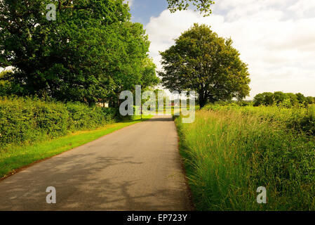 Country road with no traffic. - Stock Photo