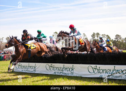 The 64th Running of the Stoneybrook Steeplechase Races, horses and jockeys hit the backstretch hurdles. - Stock Photo