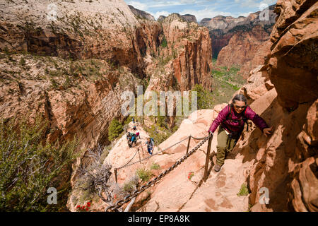 The narrow exposed ridge of the final part of the Angel's Landing hike in Zion National Park in Utah begins. This - Stock Photo
