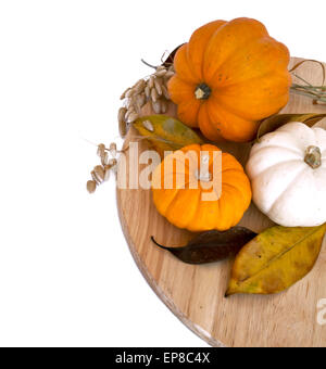 Assorted pumpkins and squashes, yellow autumn leaves on round rustic wooden board with copy space white background - Stock Photo