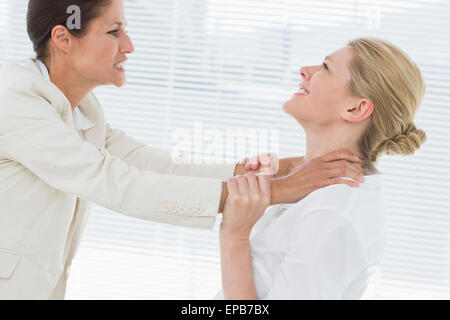 Businesswomen having a violent fight in office - Stock Photo