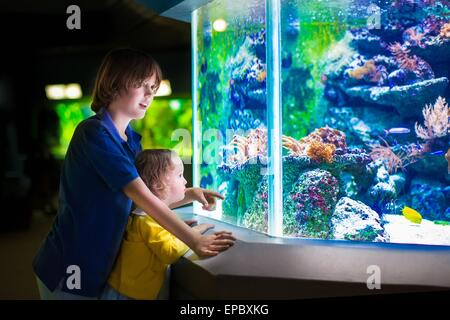 Happy laughing boy and his adorable toddler sister, cute little curly girl watching fishes in tropical aquarium - Stock Photo