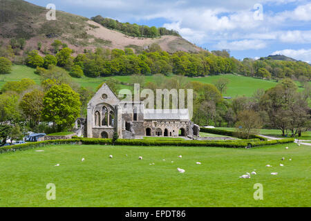 Valle Crucis Abbey, near Llangollen, Denbighshire, Wales, UK - Stock Photo