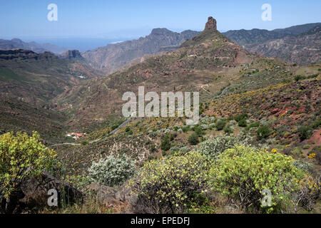 View from Cruz de Timagada towards Roque Bentayga, blooming vegetation, Gran Canaria, Canary Islands, Spain - Stock Photo