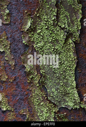 Rust and lichen on an old iron railway bridge in keswick england - Stock Photo