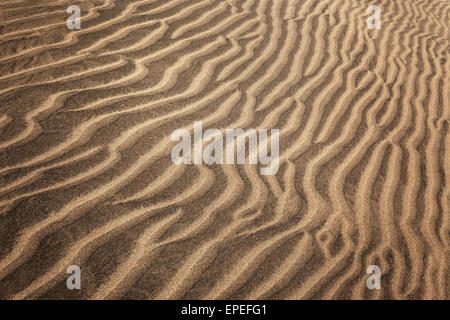 Structures in the sand, dunes of Maspalomas, Nature Reserve, Gran Canaria, Canary Islands, Spain - Stock Photo