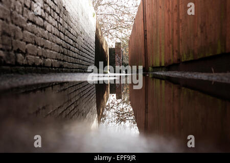 Large puddle in alleyway with brick wall and wooden fence, reflecting trees, sky, wall and fence - Stock Photo