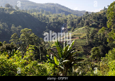 Little Rawana or Ravana Falls waterfall,  Ella, Badulla District, Uva Province, Sri Lanka, Asia - Stock Photo