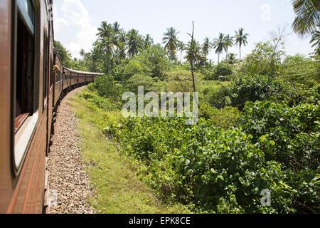 Railway train passing through countryside between Galle and Mirissa, Sri Lanka, Asia - Stock Photo
