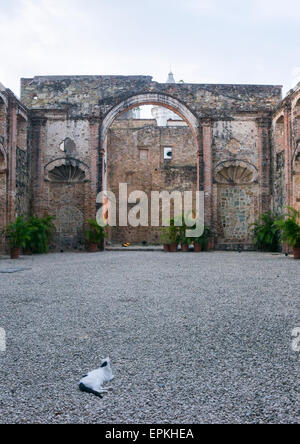 Panama, Province Of Panama, Panama City, Ruins Of Conception Nuns Convent At Panama Viejo - Stock Photo