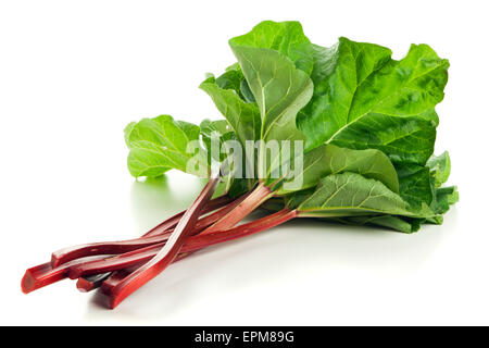 Freshly harvested rhubarb stalks with leaves isolated on white - Stock Photo