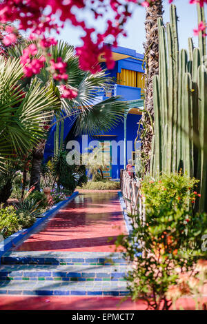 Majorelle garden of cactus with house of blue intense for Decoration jardin cactus