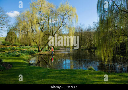 A woman and a small dog standing on a jetty by a lake. - Stock Photo